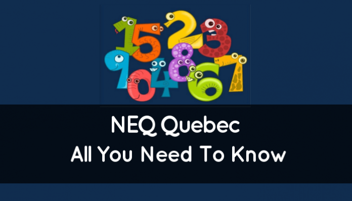 NEQ Quebec (Enterprise Number: All You Need To Know)
